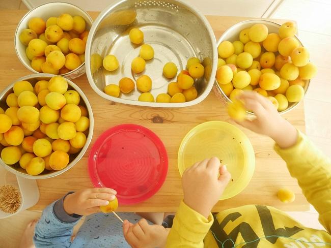 子供と梅シロップ作り